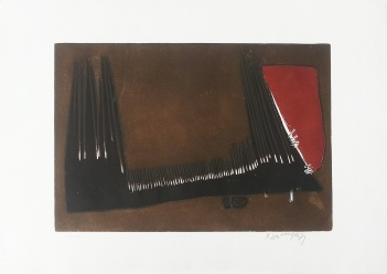 Riko Debenjak - A comb